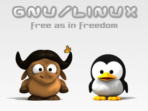 Lo gnu è un bovino africano, il pinguino è un uccello polare... eppure vanno d'accordo